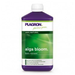 algabloom-500x500
