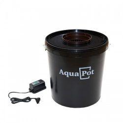 aqua-500x500