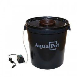 aqua-xl-500x500