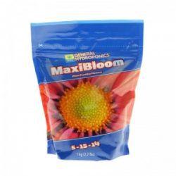 maxibloom-500x500