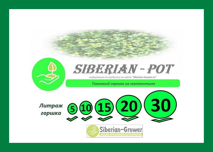 Siberian-Pot